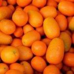 Ingredient : Kumquat