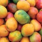 Ingredient : Mangue