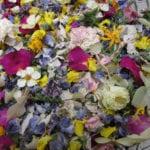 Ingredient : Mélange de fleurs séchées