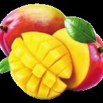 Ingredient : Mangue séchée