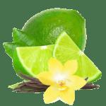 462 - citron vert-vanille